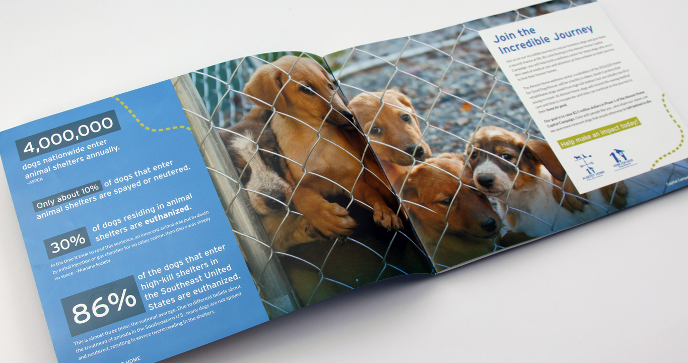 Dog Rescue Capital Campaign Brochure Design