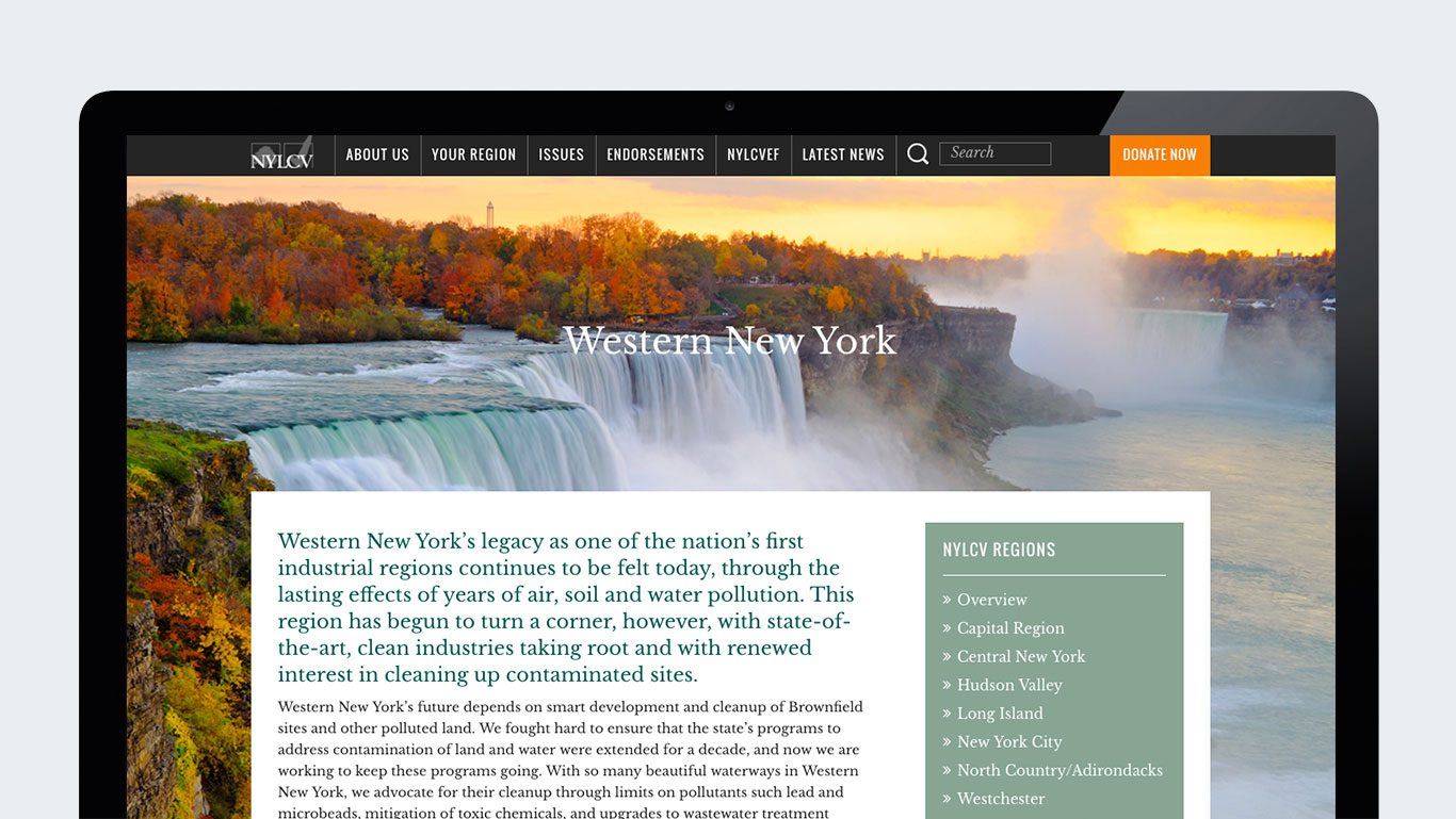 Environmental Website Design NYLCV New York Page
