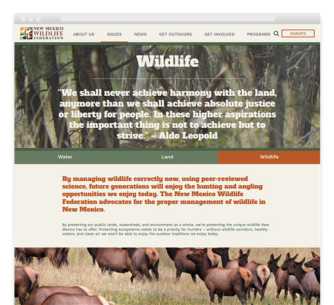 New Mexico Wildlife Federation responsive website wildlife detail page