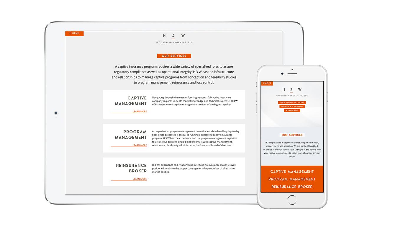 Insurance website designer